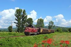 Kyustendil Freight (Krali Mirko) Tags: bdz bdzcargo bdztp freight cargo train diesel locomotive faur 55 034 55034 razhdavitsa bulgaria railway transport railroad