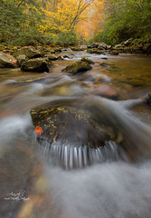 Jacob's Fork River (Avisek Choudhury) Tags: autumn river nc fallcolor northcarolina gitzo southmountainstatepark canon1635mmf28lii jacobsforkriver canon5dmarkiii avisekchoudhury acratechballhead httpwwwaviseknet avisekchoudhuryphotography