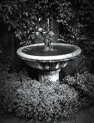 (my.tx.views) Tags: bw water monochrome statues fountains bwphotography bwphoto