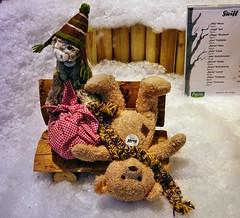 ins Steiff-Weihnachtsfenster beim Klner Kaufhof geguckt (mama knipst!) Tags: weihnachten teddybear steiff teddybr