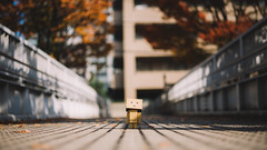 (stanley yuu) Tags: danboard city canon carlzeiss 50mm 5d japan osaka