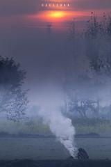 Village life in Winters (xeeart) Tags: winters village winter morning sunrise fog mist farmer fire pakistan landscape punjab lahore xeeshan canon6d portrait