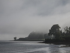 Morning Fog in the Holy Loch - Oct 2016 (GOR44Photographic@Gmail.com) Tags: holy loch dunoon argyll bute canonfd canon2885mmfd scotland gor44 panasonic g2 trees coast cowal