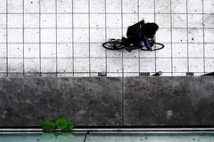 Tron (Isengardt) Tags: tron radfahrer fahrrad rad fahrer bicycle cyclist cycle steinfliesen fliesen marmor pflanze plant birdseyeview vogelperspektive above oben vonoben grafisch graphisch graphical squares vierecke quadrate rechtecke linien street strase color colour farbe stuttgart badenwrttemberg deutschland germany europe europa olympus omd em1 1250mm