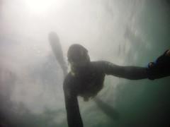 GOPR5903 (ambrogi_taubate) Tags: naturezaselvagem marinha mergulhando ubatuba sp brasil naturezamarinha fantstica apneia 10m setembro primavera 2016