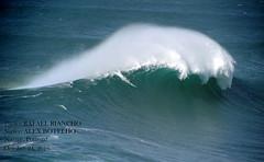 ALEX BOTELHO / 39170N0 (Rafael Gonzlez de Riancho (Lunada) / Rafa Rianch) Tags: poderosa power elegante elegant waves olas vagues ondas surfing ocean nazare portugal sports deportes alexbotelho nazar water surf mar sea wave kraftvoll