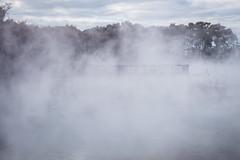Rotorua Hot Springs-13