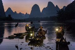 Cormorant Fishermen (Tom Kilroy) Tags: china comorant fishermen nationalgeographic yangshuo xingping liriver