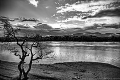 Alone (kalbasz) Tags: danube alone lonelyness clouds hungary water river bank cloud blackandwhite gd outdoor autnum