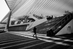 What if you could have a walk like this everyday? (jeroen_deruysscher) Tags: walk calatrava luik lige architecture streetshot shadow leading lines city life bw black white urban train station travel