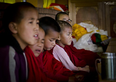 A serious(ly).. Little Monk !! (In Explore - 18/10/2016) (Piyush.Saxenaa) Tags: nikon nikond5100 d5100 nikon18105mmf3556 18105mm 18105 nikon18105mmafsdxzoomnikkorf3556gedvrlens psphotography piyush piyushsaxena piyushsaxenaa spiti spitivalley kaza monk child children monastery kazamonastery morning morningprayers