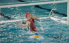 2A150819 (roel.ubels) Tags: uzsc zpb hl productions waterpolo eredivisie utrecht krommerijn 2016 sport topsport