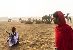 On Song   Pushkar Camel fair,Rajasthan. (vjisin) Tags: pushkar rajasthan india iamnikon nikond3200 asia camel incredibleindia indianheritage travelphotography pushkarcamelfair pushkar2016 2016 herder camelherder outdoor care nikon explore inexplore sunlight indiangirl girl musicalartist red