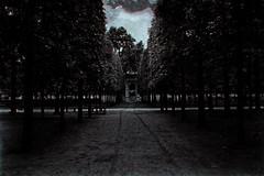 Dream 15 (eliaattardo) Tags: blur monochrome france paris tuileries garden dream