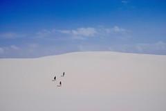 Trekking in sand dune (r y o m a) Tags: brasil viagen viaje travel trip dune duna lenois maranhao trekking explorer explorador viajero adventure nature naturaleza white