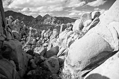 Cruel Sun (PatrickJamesPhoto) Tags: joshuatree nationalpark indiancovecampground mountains boulders rock landscape california desert