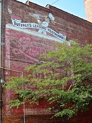 Buffalo's Leading Restaurant, Buffalo, NY (Robby Virus) Tags: buffalo newyork ny state upstate buffalos leading restaurant ghost sign signage faded forgotten wall brick ad advertisement
