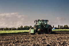 Vario (Fotos aus OWL) Tags: kulturlandschaft tractor bodenbearbeitung pflug pflgen fendt traktor landwirtschaft