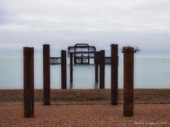 West Pier Brighton (Belinda Fewings (3 million views. Thank You)) Tags: belindafewings panasoniclumixdmc bokeh city street seaside colour colourful artistic pbwa creativeartphotograhy creative arty beautiful beautify beauty lovely outdoors outside out best depthoffield garden color colours colors interesting interest brighton westpier pier rusty sea remains december december2016 travel tourism