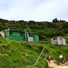 Shack. West Cove, Erith Island.