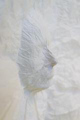 DUI_8271r (crobart) Tags: world treads festival oakville cloth fabric fibre textile art artwork