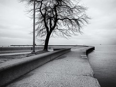 Follow (ancientlives) Tags: chicago illinois usa travel streetphotography lakemichigan lake lakefronttrail northavenuebeach beach pier november 2016 autumn blackandwhite mono monochrome bw friday