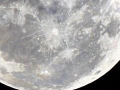 SUPERLUA-14/11/2016-ASSIS/SP (Hlio Doi photographer) Tags: super lua assis sp linda maravilhosa noite 14112016 perfeita