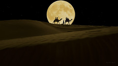Noche de luna ... (Vctor.M.Chacn) Tags: dmcfz150 fz150 victormchacn desierto luna nocturna camels desert silhouette horizon moon