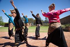 Indonesia-Emerging-3356 (jessdunnthis) Tags: indonesia australia design art futures peacock gallery emerging dance suara indonesian australian collaboration multiculturalism auburn
