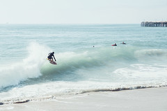 seal9 (David Behar) Tags: seal beach california skimboarding