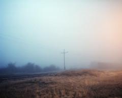 (patamus warmer) Tags: mamiya 7 film portra 160 carlton montana