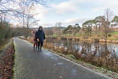 Peebles-16120435 (Our Dream Photography (Personal)) Tags: autumn countryside haylodgepark leelive neidpathcastle ourdreamphotography peebles river rivertweed scottishborders tweeddale walk winter woodland gutterbluid wwwourdreamphotographycom