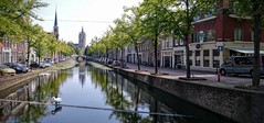 View on Old Church in Delft. (Ro Rebbel) Tags: old church canal delft swans