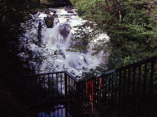 Swallow Falls Viewpoint