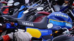 Tnr 600 (ricardo.baena) Tags: brazil nature bike brasil natureza moto paranapiacaba motocicleta tnr notreatment semtratamento a6000