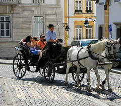 Praa do Giraldo (hans pohl) Tags: streets portugal animals cities animaux alentejo rues evora villes calche