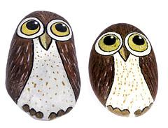 Rock Owls (Bill Gracey) Tags: cute art painting maria whitebackground softbox acrylicpainting homestudio appealing offcameraflash evenlighting yn560 yongnuorf603n yn560iii transulm