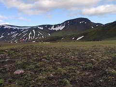 Álftavatn Hütte - Laugavegur - Trekking auf Island