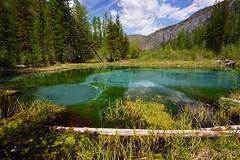 DSC_6443_ (valodya22) Tags: mountains nature landscape nikon russia geyser d600 altai altay valodya