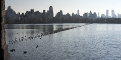 Rez Pano I (Joe Josephs: 2,861,655 views - thank you) Tags: centralpark manhattan centralparknewyork photojournalsim jacquelinekennedyonassisreservoir joejosephs joejosephsphotography