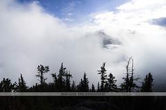 Big Clouds at Sulphur Mountain, Banff - Canada (Naomi Rahim (thanks for 3 million visits)) Tags: travel trees canada mountains nature fog clouds landscape nikon alberta pacificnorthwest banff rockymountains pnw banffnationalpark canadianrockies 2015 travelphotography nikond7000 naomirahim