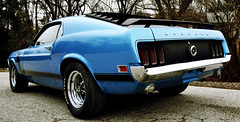 "1970 Boss Mustang • <a style=""font-size:0.8em;"" href=""http://www.flickr.com/photos/85572005@N00/23441170723/"" target=""_blank"">View on Flickr</a>"