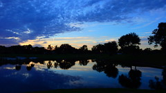 December 7th Sunset (Jim Mullhaupt) Tags: pictures camera pink blue sunset red wallpaper sky orange sun lake color reflection tree water weather silhouette yellow clouds landscape photography gold evening photo pond nikon flickr sundown florida dusk snapshot picture palm exotic p900 tropical coolpix bradenton endofday cloudsstormssunsetssunrises nikoncoolpixp900 coolpixp900 nikonp900 jimmullhaupt