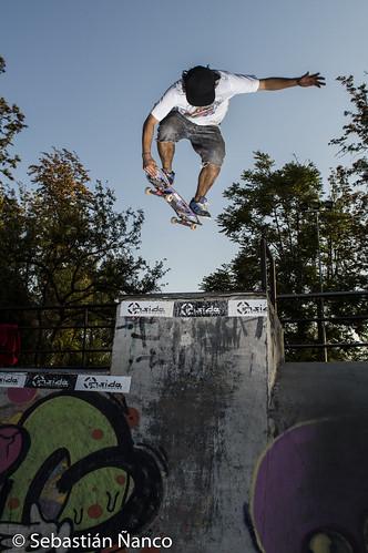 SkatePark, Parque O´Higgins