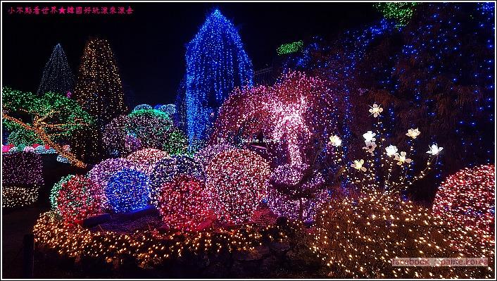 晨靜樹木園 五色星光庭園展 (4).jpg