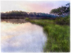 Dawn at Pellicer Creek (Solly Avenue) Tags: photomanipulation dawn waterscape light landscape river painterlyapp ipadpainting ipadsketching impressionism sunrise greenscene digitalphotoart hiking painterly