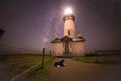 Yaquina Head Lighthouse (Justin Knott) Tags: yaquina head lighthouse dog border collie nikon d800 milky way stars purple ocean outside long exposure