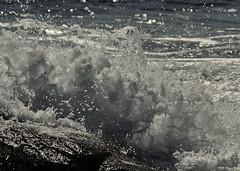Waves from Matthew here ........... (l_dewitt) Tags: hurricane hurricanematthewswaves hurricanewaves wavesfromhurricanematthew stormwaves alanticstormwaves southernnewengland earthnaturelife