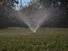 Water Bomb (Ottoclick) Tags: acqua prato innaffiatore bomba water lawn green sprinkler samsungnx300