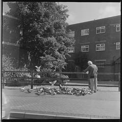 Boscombe Street (Attila Pasek) Tags: 120film 6x6 boscombe kodak trix yashicaa bw blackandwhite camera feed film man mediumformat old pigeon street